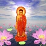 Đức Phật A Di Đà - Amitabha