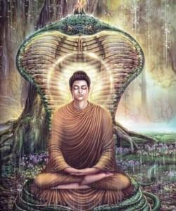 Đức Phật Thích Ca Mâu Ni 18