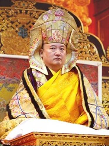 Đức Goshir Gyaltsar Rinpoche đời thứ 12 3
