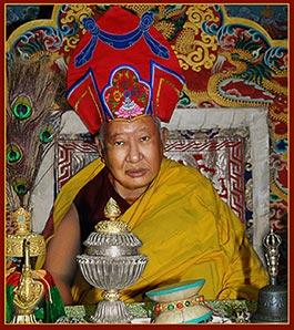 Tiểu sử ngắn Đức Kyabje Taklung Tsetrul Rinpoche 2