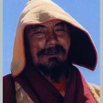 Xiazhu Qiuyang Rinpoche1